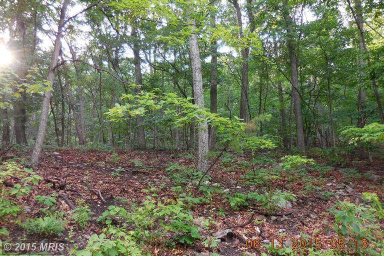 Willow Trail, Winchester, VA 22602