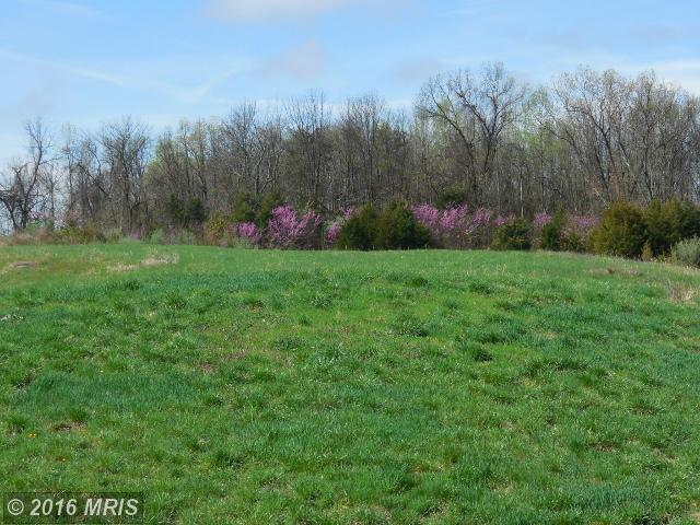 17 Lot Chimney Cr, Middletown, VA 22645