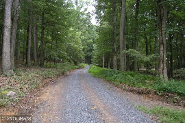Lot  #j3 Moorehead Rd, Gore, VA 22637