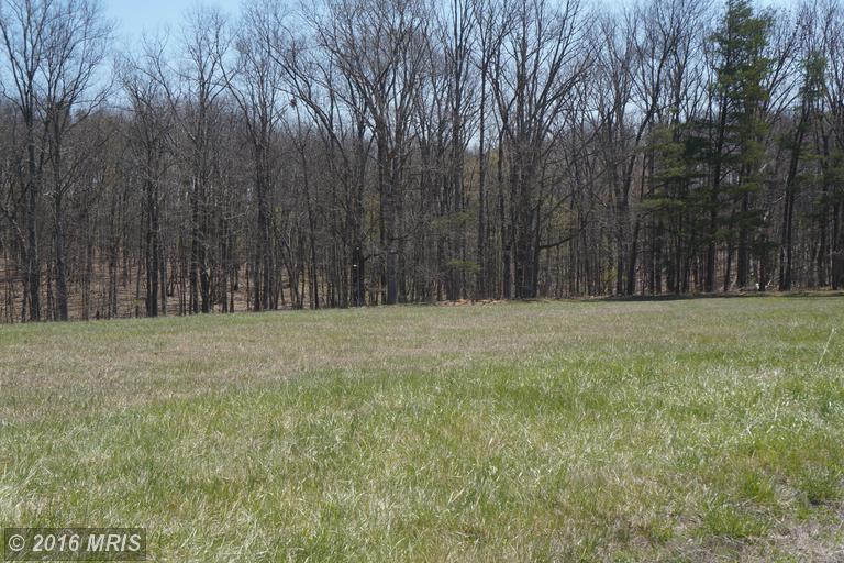 Opequon Woods Circle, Stephenson, VA 22656