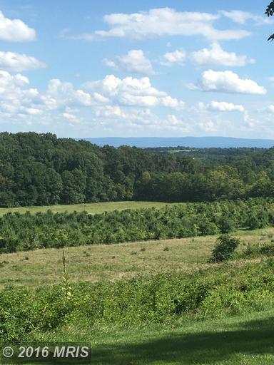 Apple Pie Ridge, Winchester, VA 22603