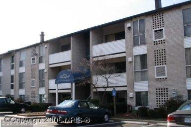 5600 Bloomfield Dr #101, Alexandria, VA 22312