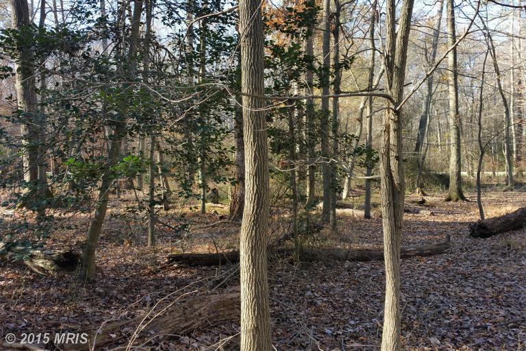 Evergreen Trail, Lorton, VA 22079