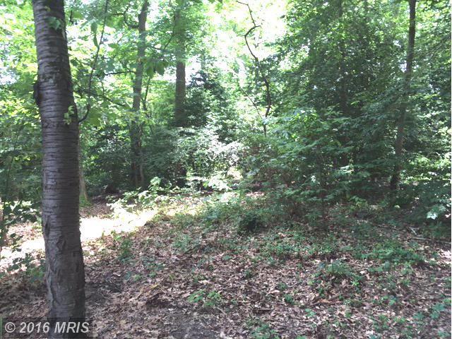 Nicotine Trail, Lorton, VA 22079