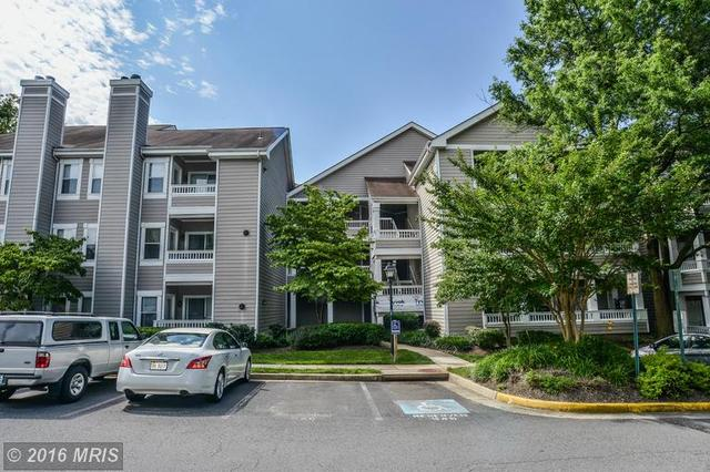 14309 Climbing Rose Way #204, Centreville, VA 20121