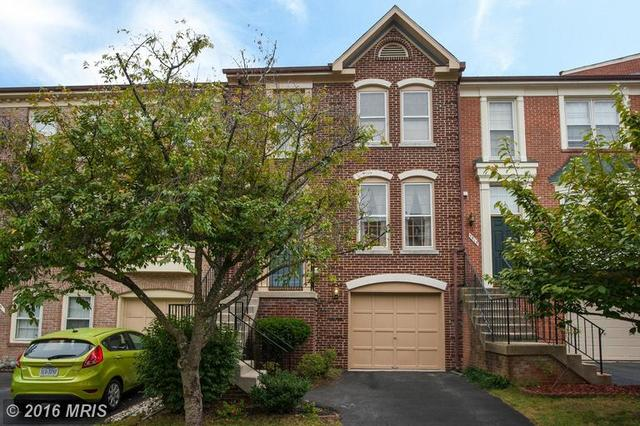 7513 Collins Meade Way, Alexandria, VA 22315