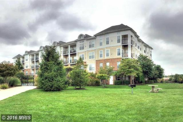 3810 Lightfoot St #304, Chantilly, VA 20151
