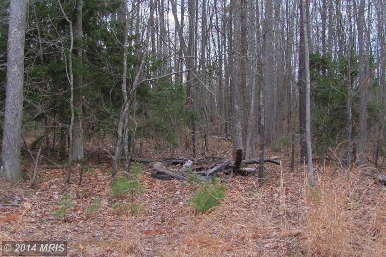 3 Sawgrass Est, King George, VA 22485
