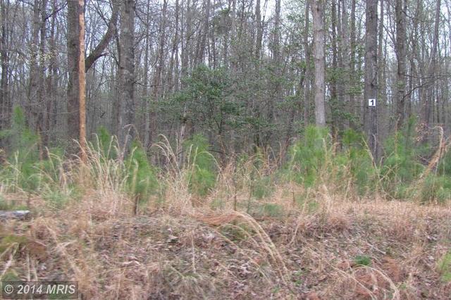 5 Sawgrass Est, King George, VA 22485