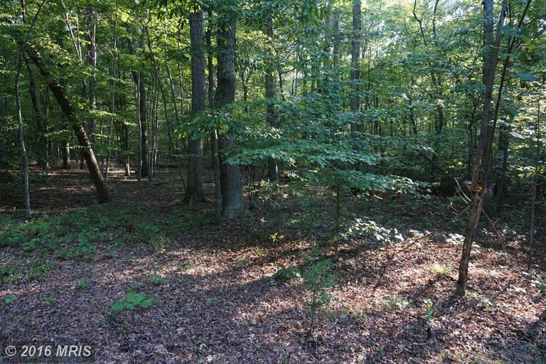 Anna Coves Trail, Mineral, VA 23117