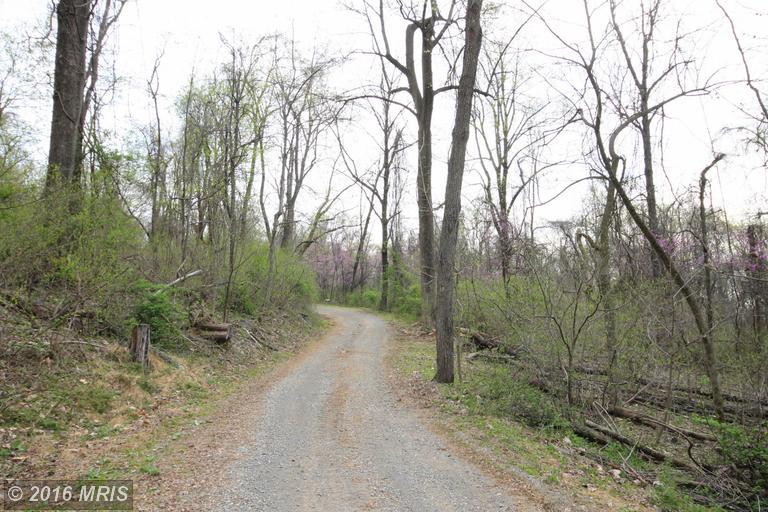 0 Tree Crops Lane, Round Hill, VA 20141