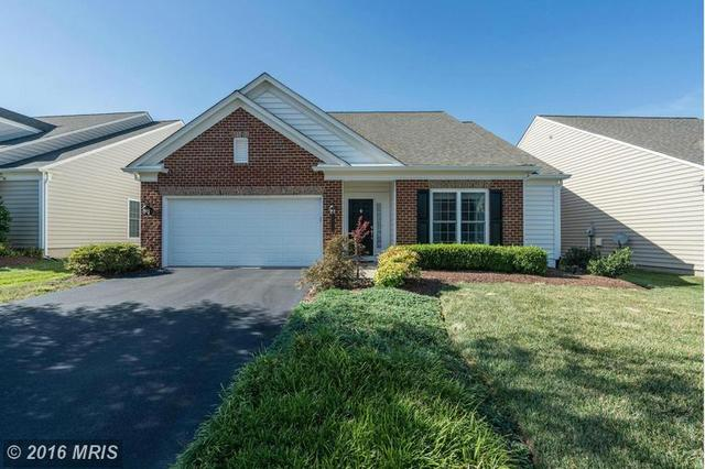 44468 Blueridge Meadows Dr, Ashburn, VA 20147