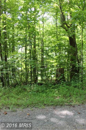 0 Lost Lakeview Road, Madison, VA 22727
