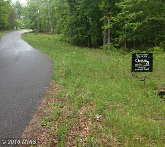 Porter Road, Orange, VA 22960