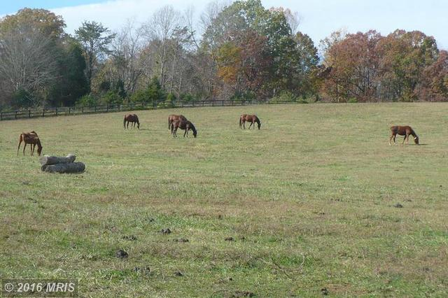 13392 Hilltop Farm Rd, Gordonsville, VA 22942