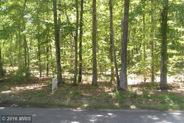 Cox Mill Road, Orange, VA 22960