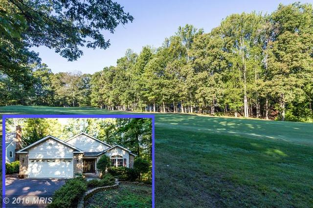 115 Fairway Dr, Locust Grove, VA 22508