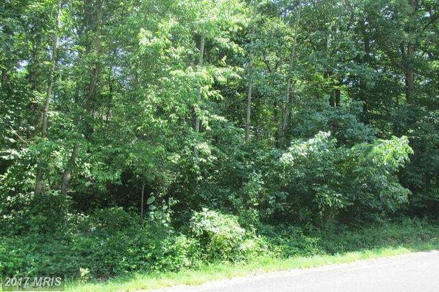 103 Birdie, Locust Grove, VA 22508