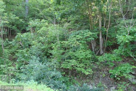 Dovel Hollow Rd., Stanley, VA 22851