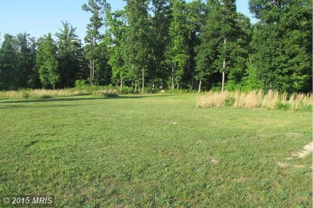 Nature Lane, Shenandoah, VA 22849
