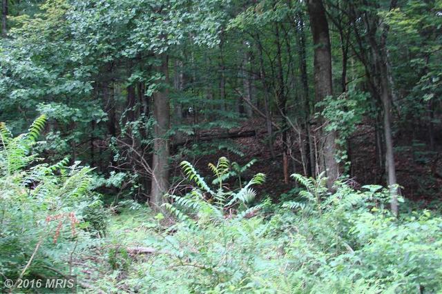 Pine Grove Rd., Stanley, VA 22851