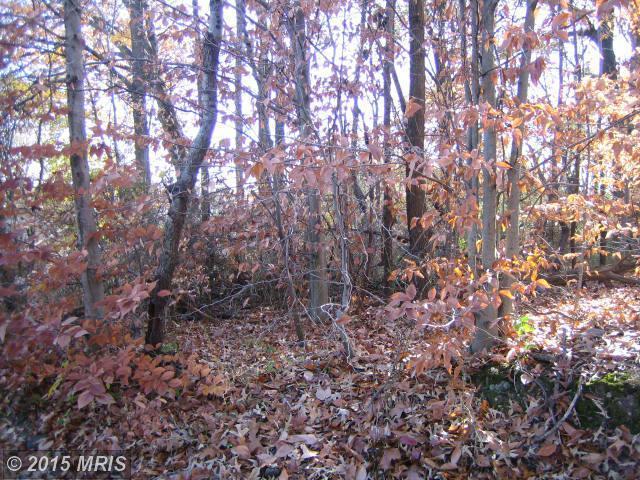 1607 Mount High St, Woodbridge, VA 22192