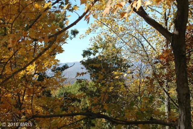 483 Red Oak Mountain Rd, Woodville, VA 22749