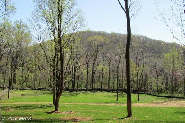 Old Browntown Rd, Huntly, VA 22640