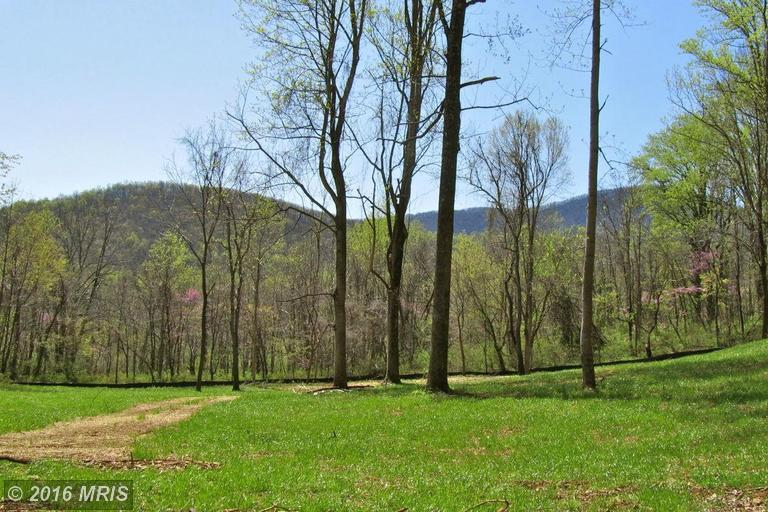 Old Browntown Road, Huntly, VA 22640