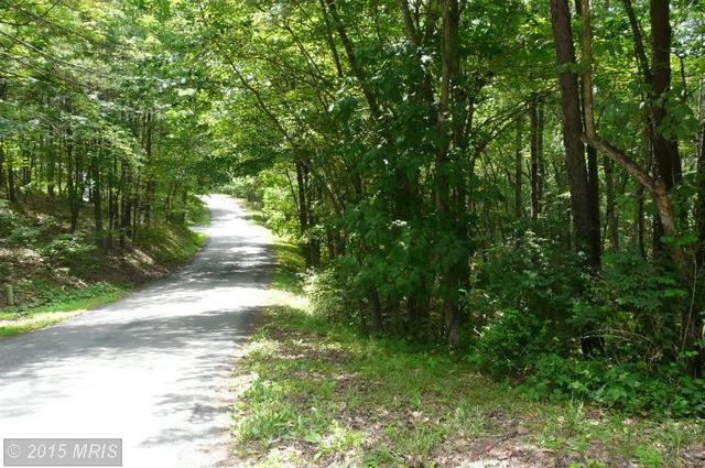 Straton Way, Basye, VA 22810