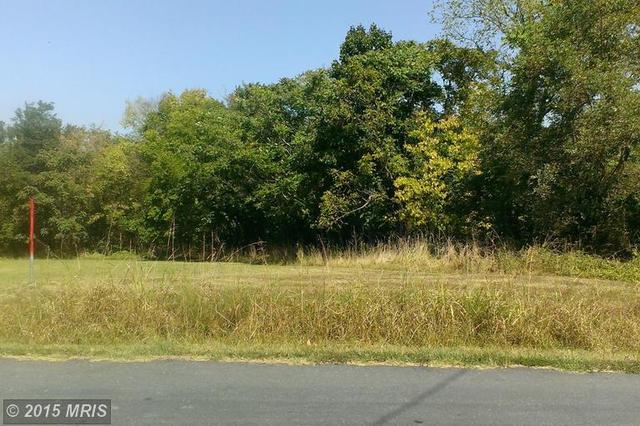 Bowman Mill Rd, Strasburg, VA 22657
