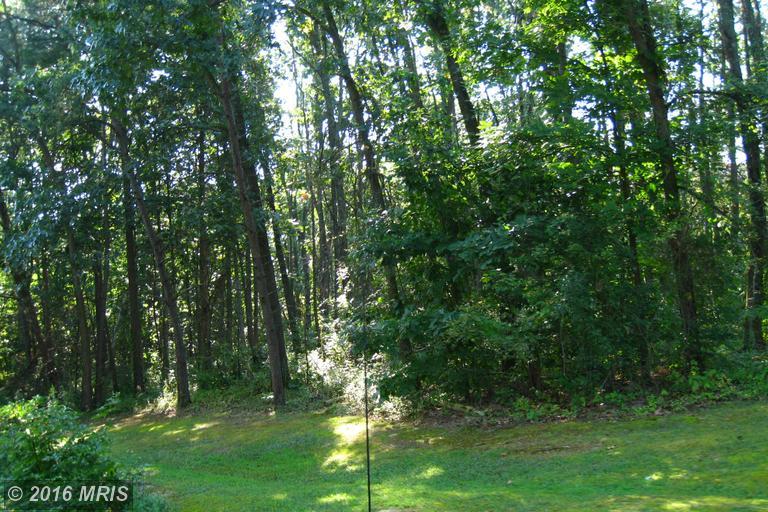 Oak Hill Drive, Woodstock, VA 22664