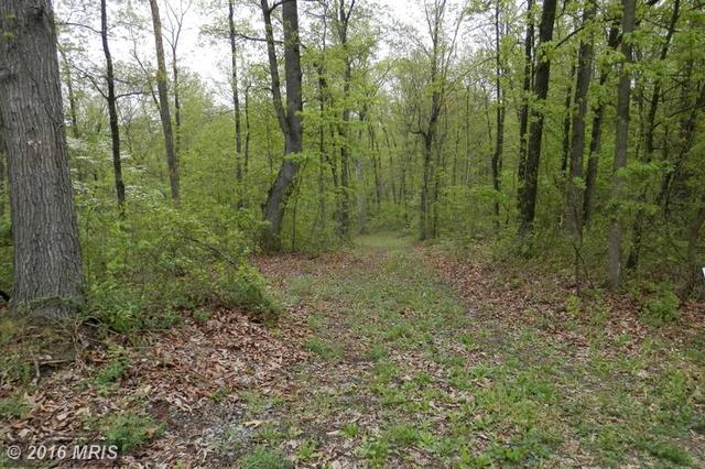 0 Round Hill Rd, Mount Jackson, VA 22842