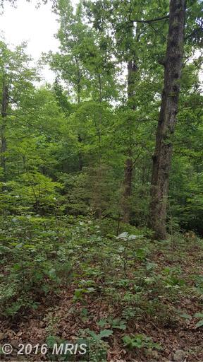 Mooreland Gap, Mount Jackson, VA 22842