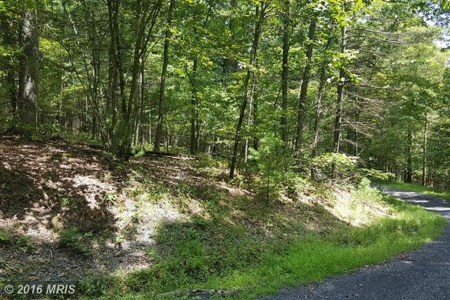 Beech Road, Mount Jackson, VA 22842