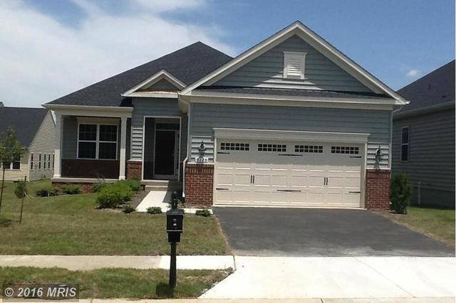 5905 S Mills Manor Ct Fredericksburg, VA 22407