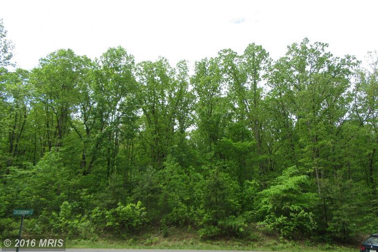 17138 Arrow Point Drive, Orange, VA 22960