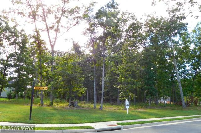 Meadow Valley Drive, Spotsylvania, VA 22551