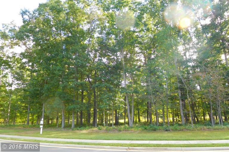 11112 Vanderbilt Cove, Spotsylvania, VA 22551