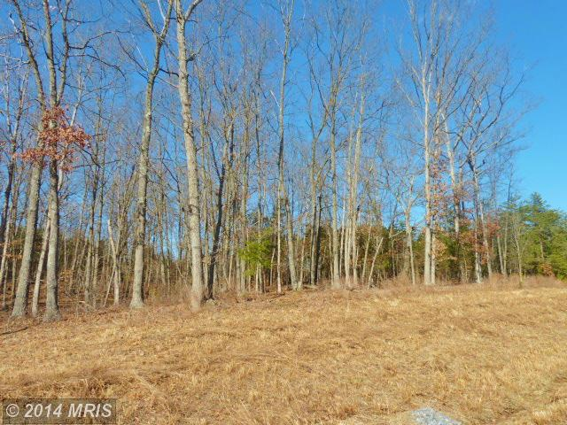 Lot 38 Comforter Lane, Middletown, VA 22645