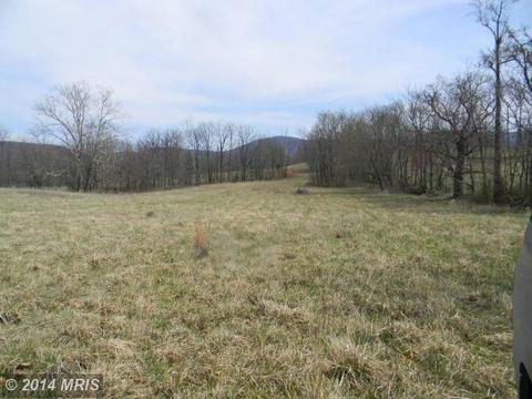 Boyd's Mill - Lot 8 Lane, Bentonville, VA 22610