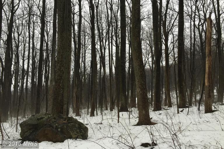 27 Chipmunk Trail Ln, Linden, VA