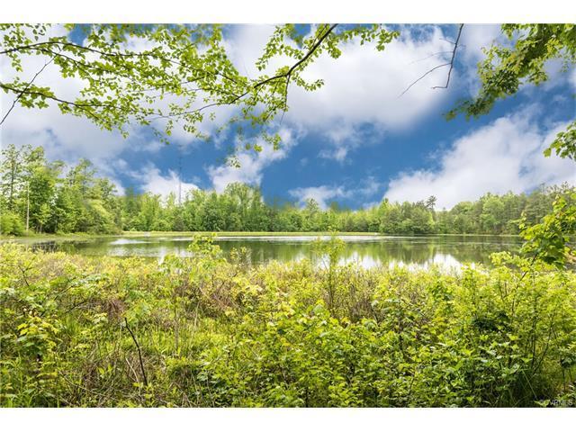 14906 Watermill Lake Trl, Midlothian, VA