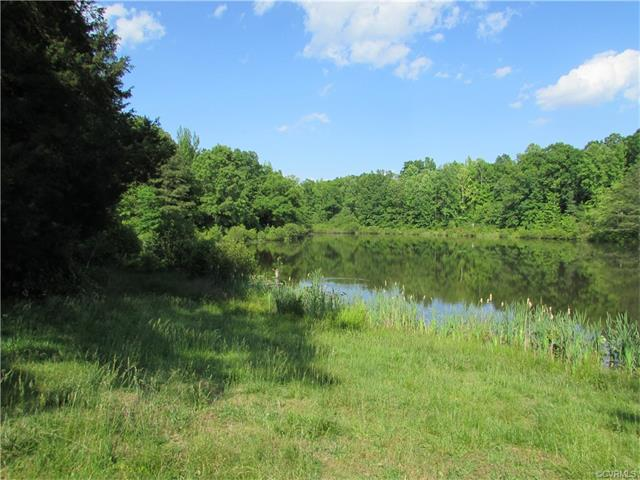 14700 Spring Creek Road, Dinwiddie, VA 23841