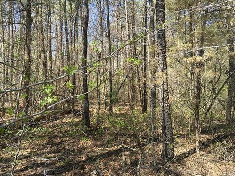0 Holly Grove Ct, Bumpass, VA 23024