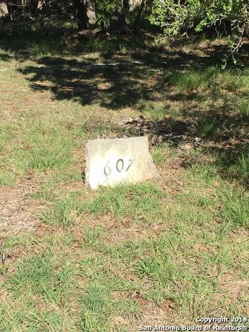 607 Oakridge Trl, Pipe Creek, TX