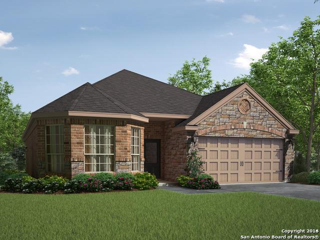 376 Cylamen New Braunfels, TX 78132