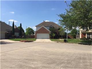 9930 Winchester Village Ct, Houston, TX