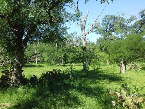 000 Elm Creek Father Anders, Flatonia, TX 78941