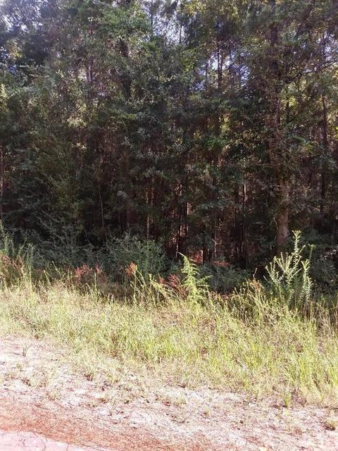 000 Wildwood Ln, Plantersville, TX For Sale MLS# 50230406 - Movoto on grimes county, crystal beach, todd mission, roans prairie, texas, new caney, shiro, texas,